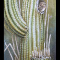 #1340 Owl in Saguaro Cactus Limited-Edition Giclee  (Edition Size: 50)