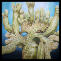 #1346 Crested Saguaro Limited-Edition Giclee  (Edition Size: 50)