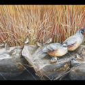 #820 Quail Family Limited-Edition Giclee (Edition Size: 50)