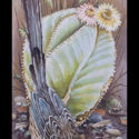 #1349 Roadrunner, Lizard & Cactus Limited-Edition Giclee (Edition Size: 50)