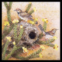 #1432 Cactus Wrens w/Nest & Cholla (Edition Size: 50)